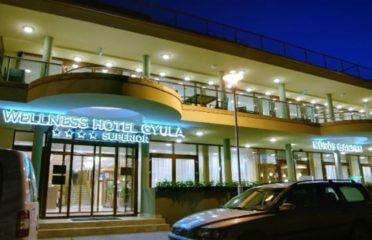 Wellness Hotel